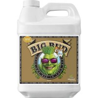 Advanced Nutrients - Big Bud Coco Liquid 10L